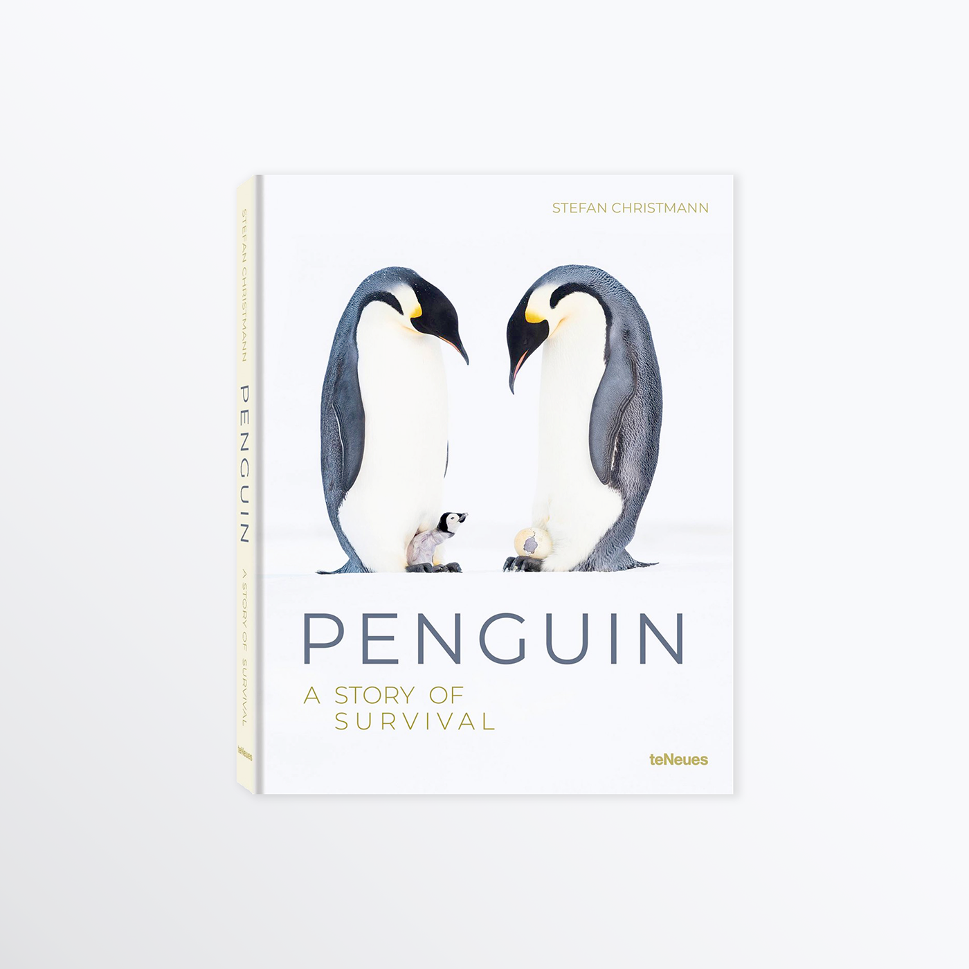 Penguin Book First Feedback
